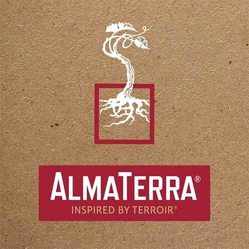Alma Terra Logo Branding Design